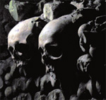 paris catacombs: skulls
