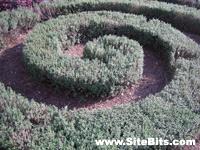 Conservatory Garden: Pattern