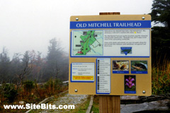 Mount Mitchell Trailhead