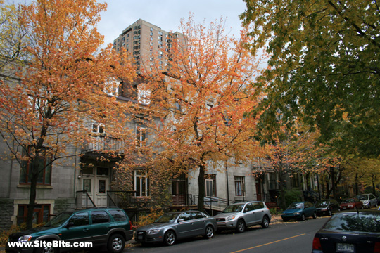 McGill Ghetto: Fall