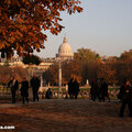 Fall in the Luxembourg Garden(thumb)