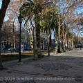 Avenida da Libertade(thumb)
