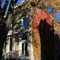 Fall in McGill Ghetto(thumb)