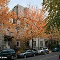 McGill Ghetto: Fall(thumb)