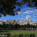 La Grande Roue (Ferris Wheel) at the Jardin des Tuileries, 2012(thumb)
